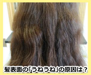 髪表面の「うねうね」の原因は?