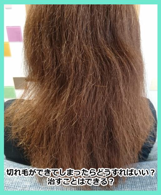 切れ毛ができたらどうすればいい?