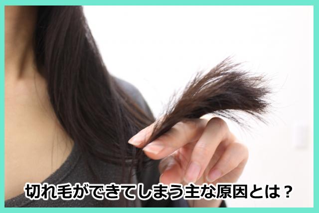 切れ毛ができてしまう主な原因とは