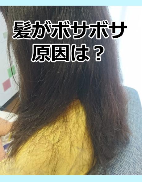 髪がボサボサの原因